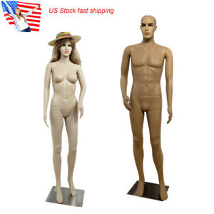 Us 183 176cm Height Human Sculpture Male Female Curved Right Arm Lifelike Model