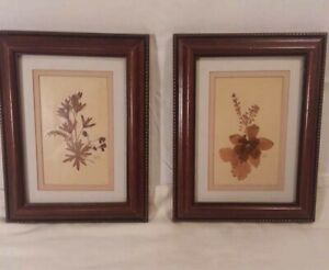 Pair Of Vintage Pressed Flowers Set Of 2 Wood Framed Wall Decor Picture 1970 S