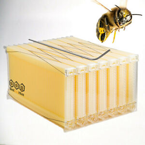 Easy Beekeeping Auto Honey Super Frames Bee Hives Us Distributor