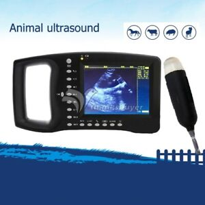 Portable Veterinary Ultrasound Scanner For Small Animals Dogs Cats Sheep Gdf a4
