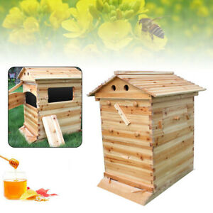 Beekeeping Chinese Fir Box Brood Bee Wooden House Deluxe Bee Hive Starter Kit