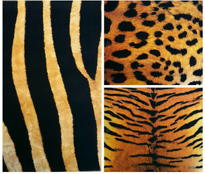 Two Pocket Folders Animal Skin Texture Case Of 50