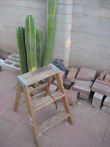 Vintage Wooden 2 Step Stool Ladder Barn Country Shabby Decor