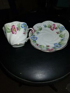 Vintage Salisbury Bone China Made In England Tea Cup Saucer Estate Find
