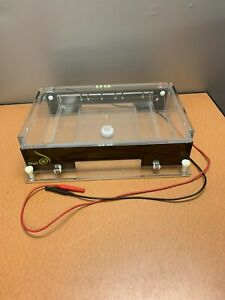 Thermo Fisher Scientific Owl A2 Large Gel Electrophoresis System