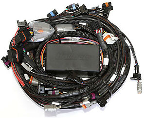 Haltech Ht 045676 Ps2000 Ford Mustang 89 95 50 Terminated Sequential Harness