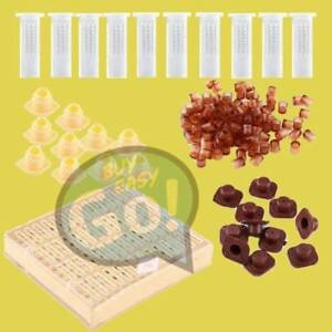 Cupkit Box Queen Rearing 110 Cell Cups Set 110x Hair Roller Cage Beekeeping