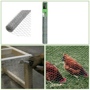 Chicken Netting Poultry Fencing 20 gauge Galvanized Wire Plant Protection 50ft
