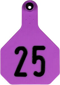 Y tex Large 4 Star Cattle Ear Tags Purple Numbered 26 50