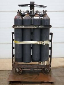 Nitrogen 12 pack Gas Cluster Dewar Model Ni Pt12 1 968 Cu ft volume