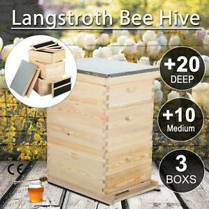 30 Frames Langstroth Hive Frame bee Hive Frame beehive Frames W queen Excluder