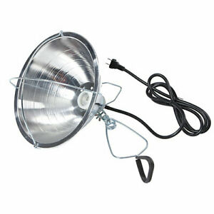Little Giant Brooder Reflector Lamp