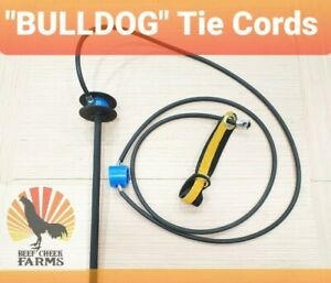 bulldog Gamefowl Tie Cords Leather Hitch Gallos