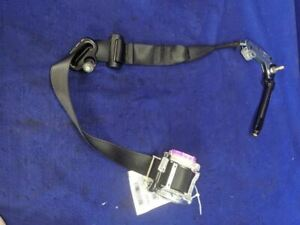 2015 2017 Ford Mustang Shelby Gt350 Front Passenger Coupe Seat Belt Restraint