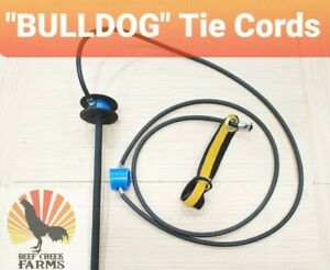 1 Dozen Nylon bulldog Gamefowl Tie Cords Gallos