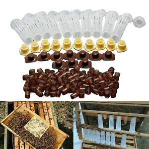 Beekeeping Tools Equipment Set Queen Bee Rearing System Cultivating Box 110pcs