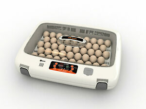 Rcom Mx50 Egg Incubator Hatcher Automatic New Us 110v Max 50