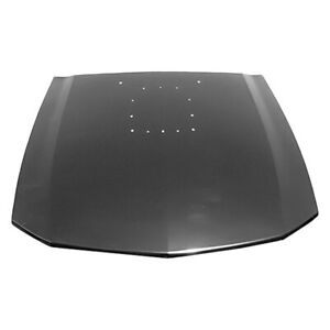 For Ford Mustang 2005 2009 Replace Fo1230286pp Hood Panel