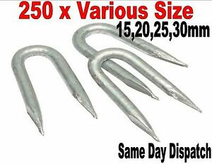 250 X Heavy Duty Galvanised U Nails Fencing Pointed Chicken Wire 15mm 50mm
