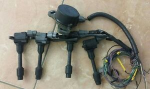 Cas And 4 Coils With Pigtail Harness P12 Primera Sr20ve Neo Vvl Nissan