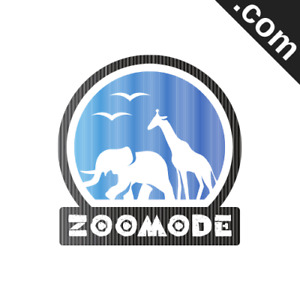 Zoomode com 7 Letter Catchy Brandable Premium Domain Name For Sale Godaddy