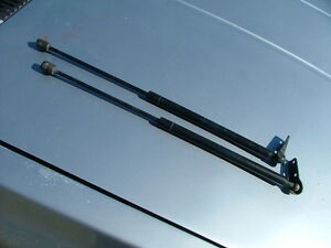 Sachs Stabilus Vw Wagon Tailgate Lift Support