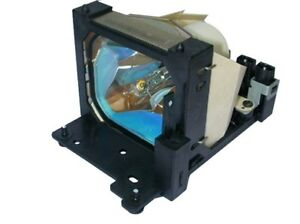Original Bulb In Cage Fits Elmo Dt00331 Projector Lamp 180 Day Warranty