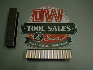 Paslode Style Wide Crown 16 Gauge 1 Length Staples 10 000