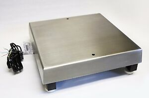 12 x12 Rice Lake Benchmark Mild Steel Bench Scale