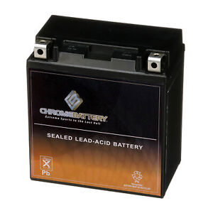 Ytx20ch bs High Performance Maintenance Free Sealed Agm Motorcycle Battery