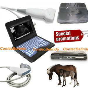 Vet Veterinary Digital Laptop B Ultra sound Scanner 7 5m Linear Probe Contec