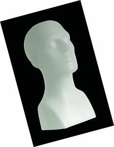 15 Tall Male Mannequin Head Durable Plastic White 50013