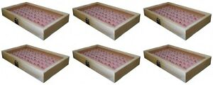 6 Natural Wood Glass Top Lid Pink 72 Ring Jewelry Display Storage Box Cases