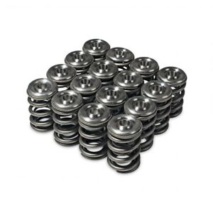 Skunk2 Alpha Valve Springs Titanium Retainer Kit For Honda H22 Vtec