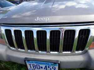 Grille Chrome Fits 99 03 Grand Cherokee 232351