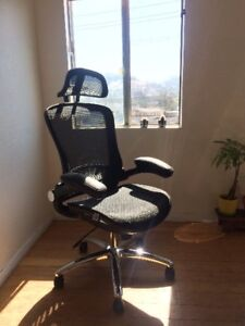Mesh Executive Chair High Back With Adjustable Headrest And Padde