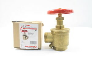 New Giacomini A51y001 Hose With Hydrolator Brass Threaded Fire Valve