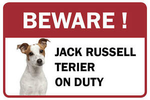 Jack Russell Terrierbeware Business Store Retail Counter Sign