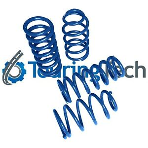 Lowering Springs 1979 1993 Mustang 1 6 f 2 0 r Touring Tech Performance Blue