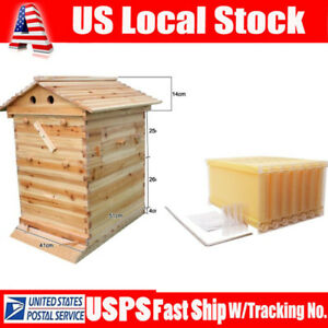 2018 7pcs Auto Honey Beehive Hive Frames 1pc Beekeeping Wooden Bee Hive House