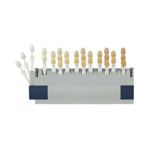 Vita Toothguide 3d master Shade System With 26 Shades And 3 Bleached Shades
