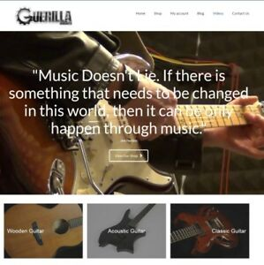 Fully Stocked Guitar Website Business free Domain free Hosting free Traffic