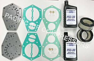 Speedaire Tf022200av 3z493 Valve Plate Gasket Kit 10hp Compressor W Filter