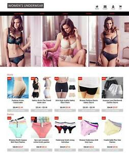 Established Profitable Ladies Underwear Turnkey Dropship Website For Sale