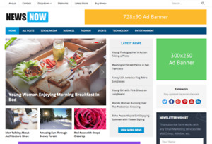 Newsnow Blog News Magazine Wordpress Website