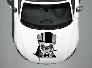 Dog Animal Full Color Car Hood Vinyl Sticker Decal Fit Any Vehicle Auto H37