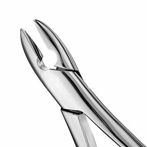 Standard Extraction Forceps F1 Hu friedy Fda