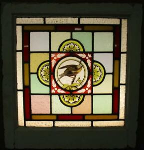 Victorian English Leaded Stained Glass Window Hand Painted Bird 19 75 X 21 25