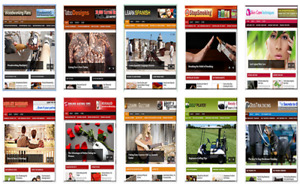 Wordpress Website s All 275 Files 600 Websites Reduced To 129