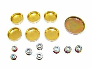 For 1994 2004 Ford Mustang Expansion Plug Kit 58199cm 1998 1995 1996 1997 1999